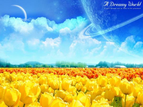 Мири мечты