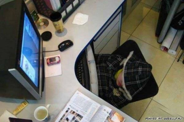 Спим на работе не заметно