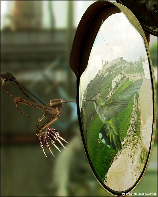 Другое отражение