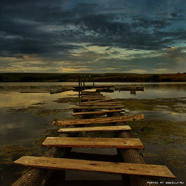 Топ 20 лучших фотографий сайта Фотокритик.ру
