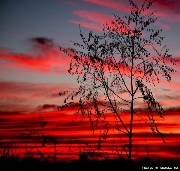 Закаты