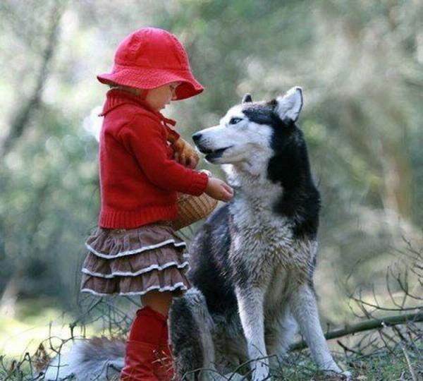 Люди и животные