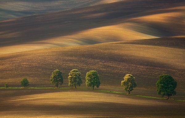 Фотограф Krzysztof Browko