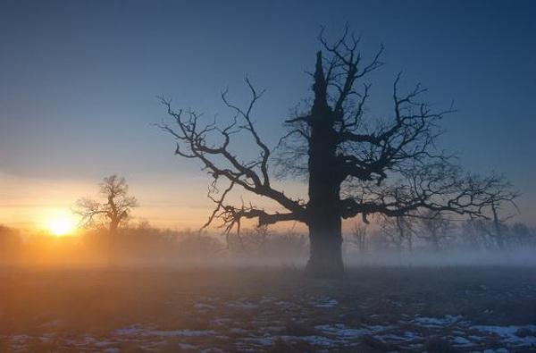 Фотограф Marek Kiedrowski