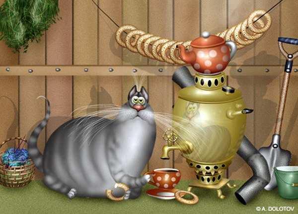 Позитив коты долотов рисунки приколы