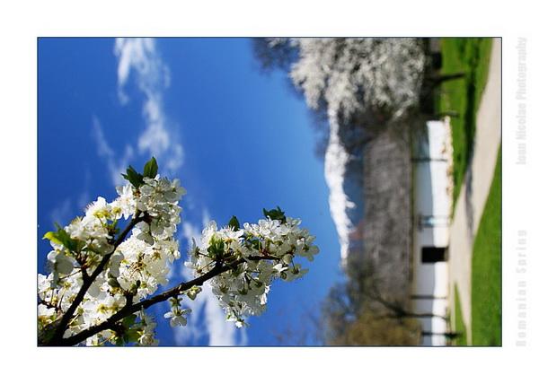 А вы заметили весну