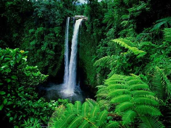 Райские уголки