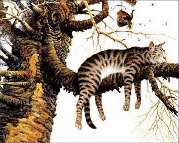 Прикольные коты были были торчковые