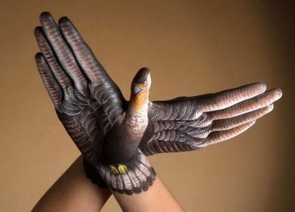 Животные - руки