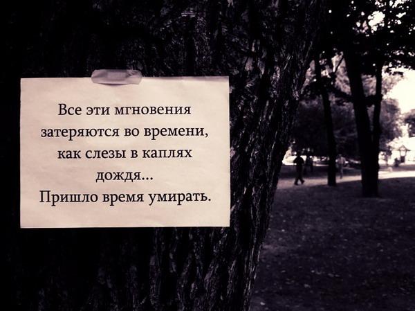 Любимые цитаты