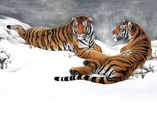 Рисованные животные