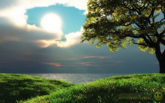 Красивейшие пейзажи
