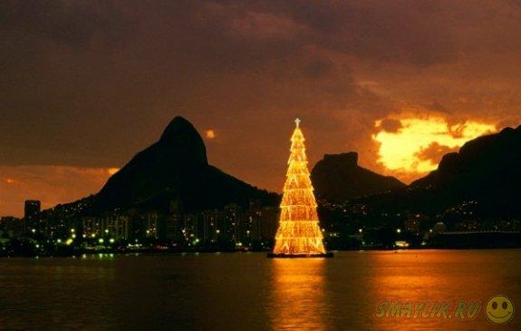 Самая высокая плавающая рождественская  елка