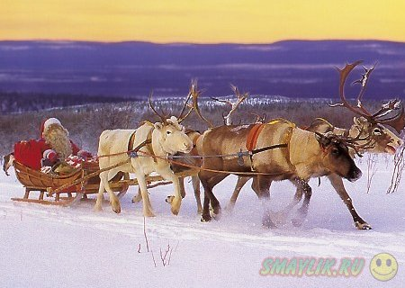 Лапландия: Сказочная страна  дедушки Санты