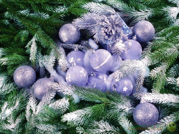 В Италии новогодние деревья можно  вернуть в магазин