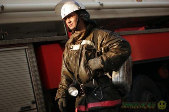 В Британии пожарные спасли белку из водоема