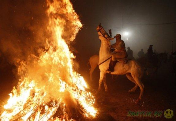 Завораживающее празднование Дня Святого Антония в Испании