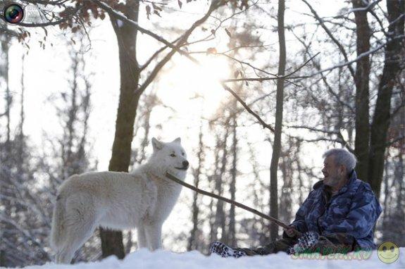 Бывший немецкий десантник создал уникальный Парк волков