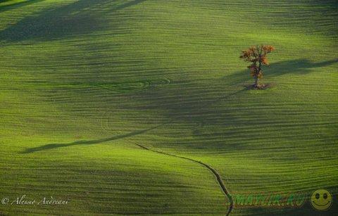 Чарующие пейзажи Алессио Андреани