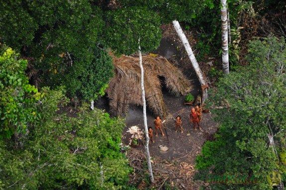 В Колумбии племена Пассе и Юри скрывались в джунглях более века