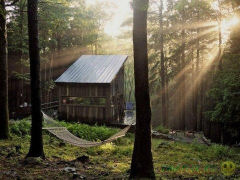 Дома, построенные вдали от городской суеты