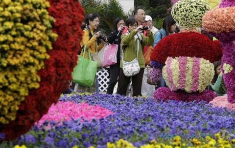 Выставка цветов в Гонконге