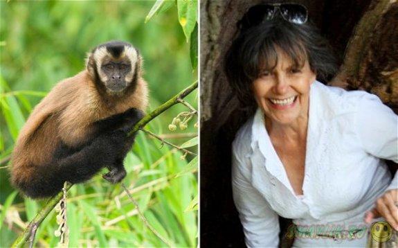 Жительница Британии написала книгу о своей жизни с обезьянами