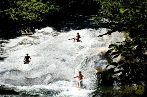 Удивительный уголок природы в Южной Каролине