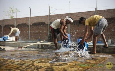 Город Бхадохи - центр создания ковров ручной работы