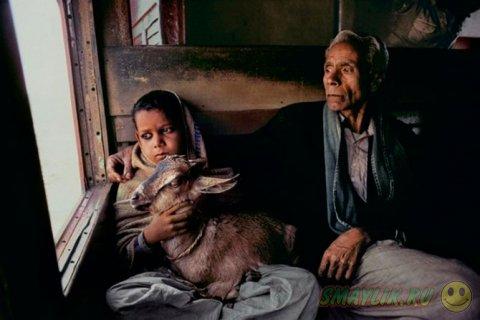 Страничка в Индию от Стива Маккерри