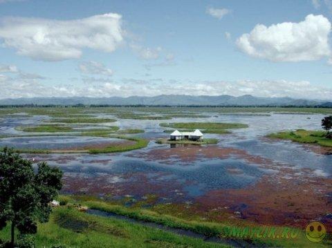Пхумди - плавающие острова озера Локтак в Индии