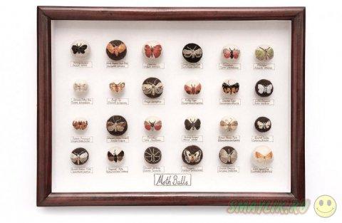Насекомые и улитки из войлока созданные британской рукодельницей Клэр Мойнихан