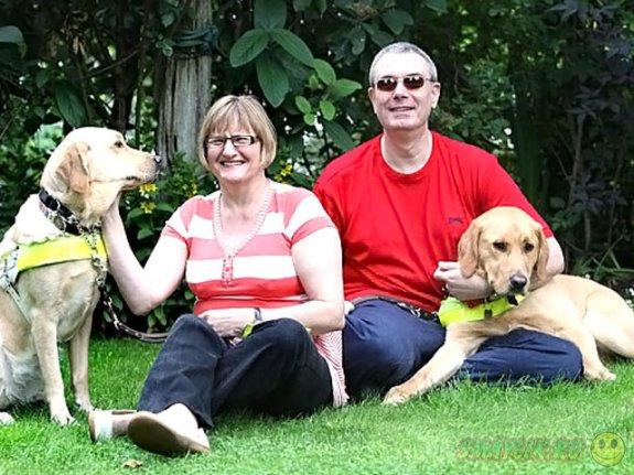Незрячие британцы встретились благодаря своим собакам-поводырям
