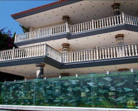 Житель турецкого города Измир установил возле своего дома 50-метровый аквариум