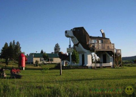 Оригинальный отель в форме собаки