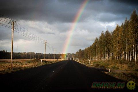 Разноцветные краски радуги