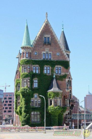 Человеческие жилища,  утонувшие в зелени