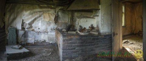 Дикие животные в заброшенных домах в Финляндии