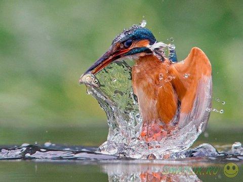 Красивые фотографии со всего света