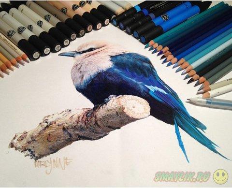 Удивительные рисунки Карлы Миалинн