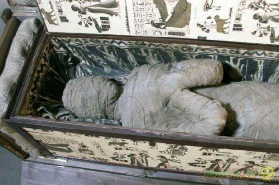 Во Франции мальчик обнаружил на чердаке сундук с мумией