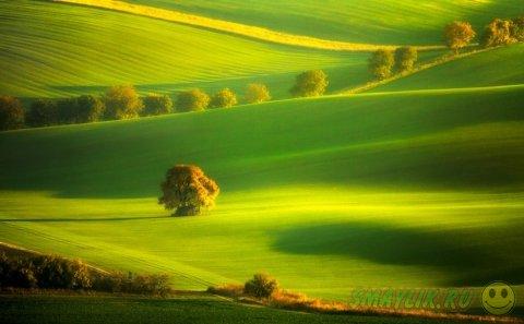 Пейзажи Моравии