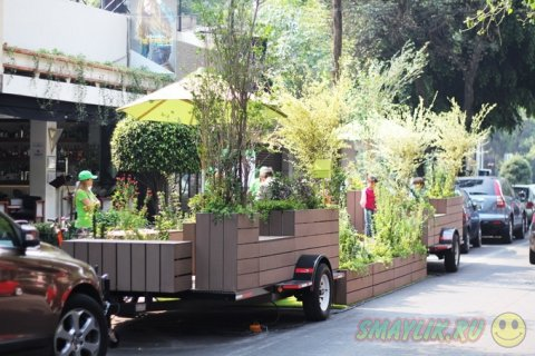Передвижной мини-парк на колесах
