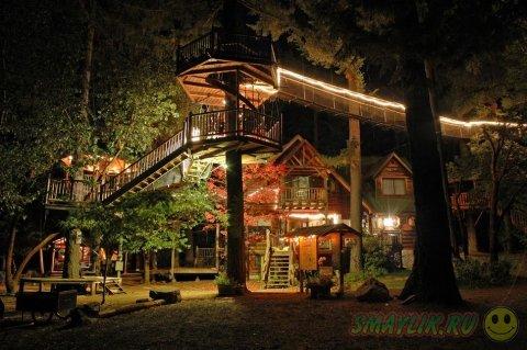 Самые красивые лесные домики
