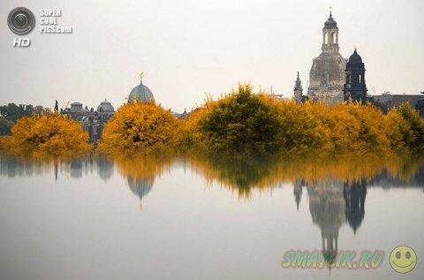 Осенняя палитра красок