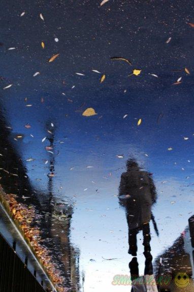 Картины дождливых отражений