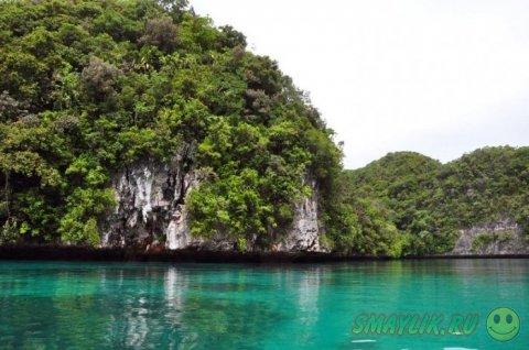 Уникальная природа архипелага Палау