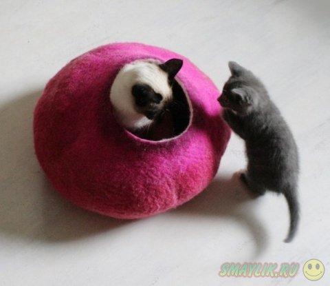 Дизайнерские домики для кошек