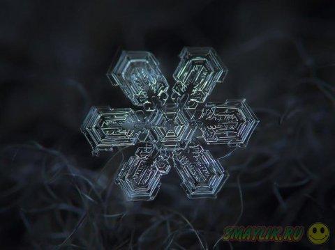 Снежинки от Алексея Клятова