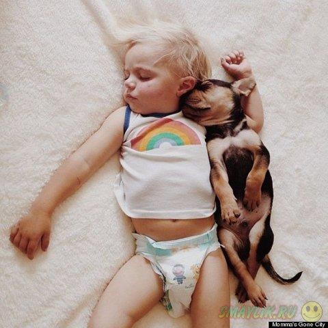 Тихий час  малышей Тео и Бо